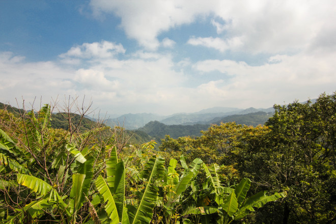 taiwan mountainous jungle skyline