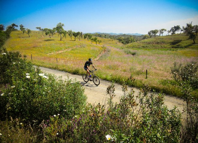 solo cyclist cruising through a field of wildflowers in portugal